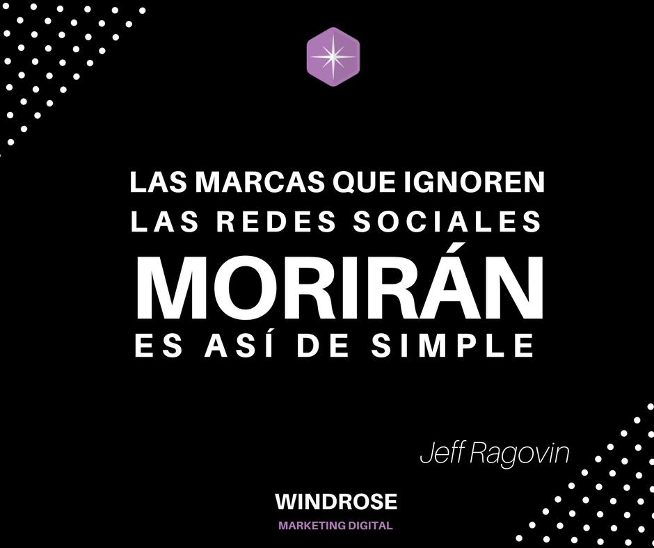 Frases Sobre Marketing Digital Windrose De Paola Vidal